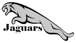 North Jackson Elementary logo of attacking jaguar